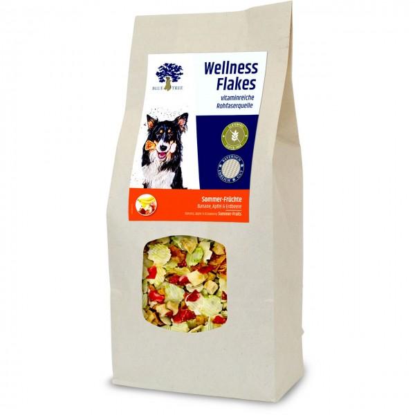 BT Wellness Flakes Sommer-Früchte 650 g