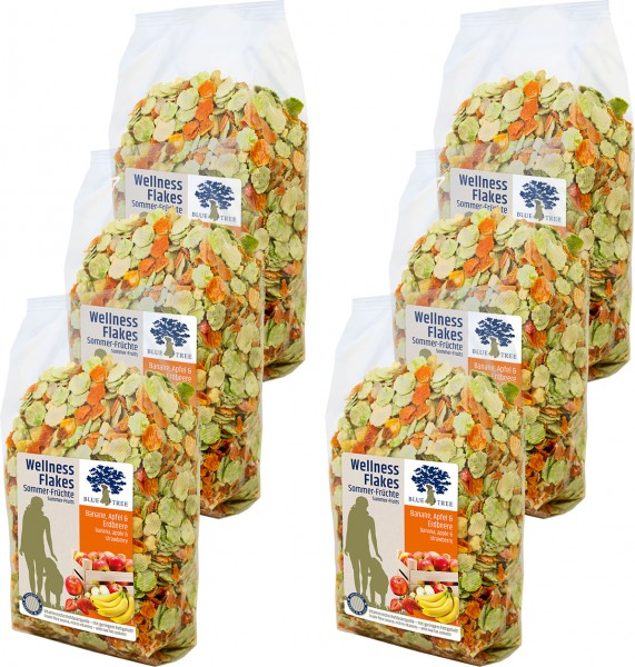 BT Dog GL Wellness-Flakes Sommer-Früchte 650g